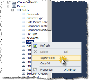 Importing Field using the CKS:DEV Import Field option