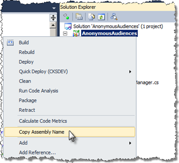 Copy Assembly Name menu option highlighted in the project context menu in Visual Studio 2010