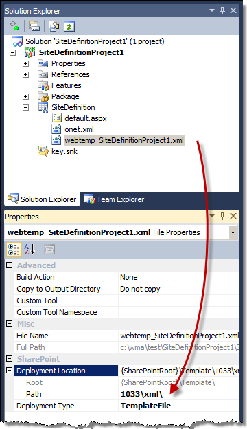 Custom Site Definition created using the Visual Studio 2010 SharePoint Developer Tools