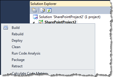 Standard menu options for a SharePoint Project