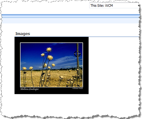 Images List View Web Part automatically turns into a slideshow as soon as the JavaScript is added to the page