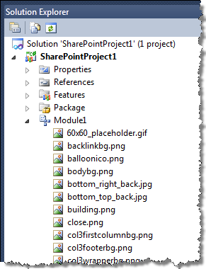 Assets in a Module created by the Visual Studio 2010 SharePoint Developer Tools